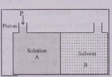 Explain the phenomenon of osmosis and the pressure