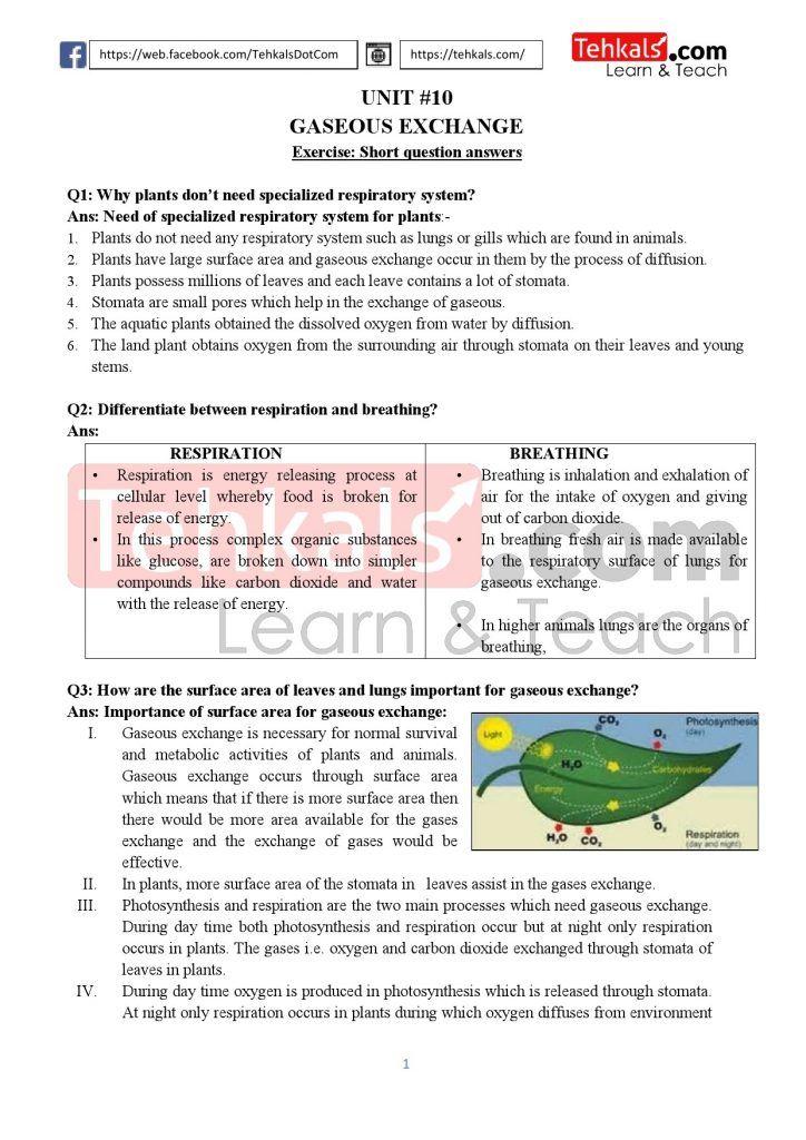 KPK TEXTBOOK Biology Class 10 Notes PDF Download