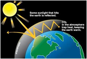 Increase in concentration of CO2 cause greenhouse effect justify it