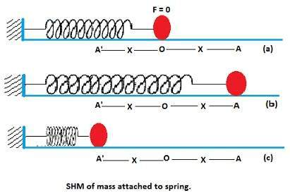 Motion of Mass Attached to spring: