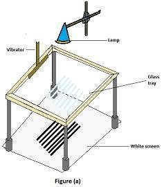 Consider a ripple tank such that it has a base of the glass. In order to illuminate the tank, x we fall light from the above, so that the light may shine through the water as shown in figure (a). By doing so, crusts in waves will appear by bright-line and troughs will be by dark lines.