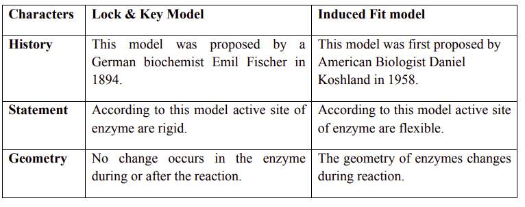 The main difference between induced fit and lock and key model is that in the induced fit model, the active site of the enzyme does not quite fit the substrate whereas in the lock and key model, the active site of the enzyme is the complement of the substrate and hence, it precisely fits the substrate.