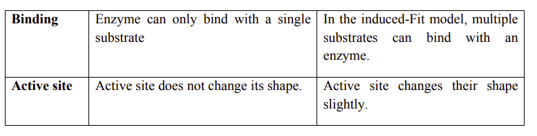 Differentiate between lock and key model and the induced fit model1