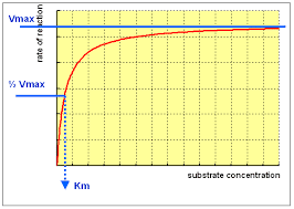 Substrate concentration: Increasing substrate concentration also increases the rate of reaction to a certain point. Once all of the enzymes have bound, any substrate increase will have no effect on the rate of reaction, as the available enzymes will be saturated and working at their maximum rate.