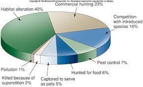 Known causes of animal