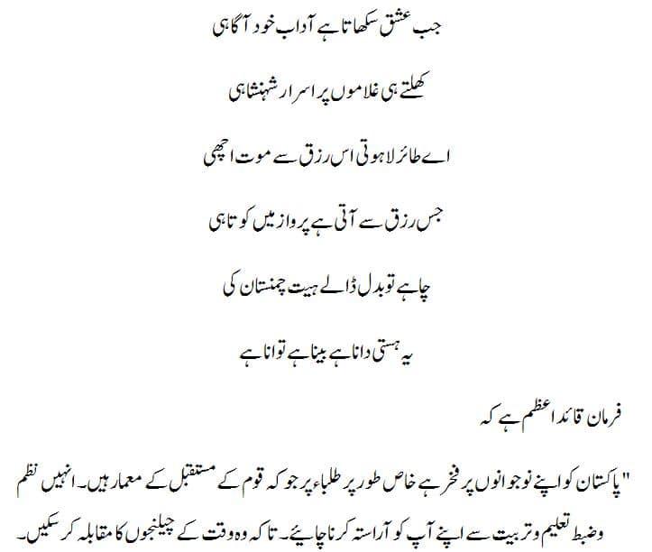 Pakistan Independence Day Speech in Urdu 3