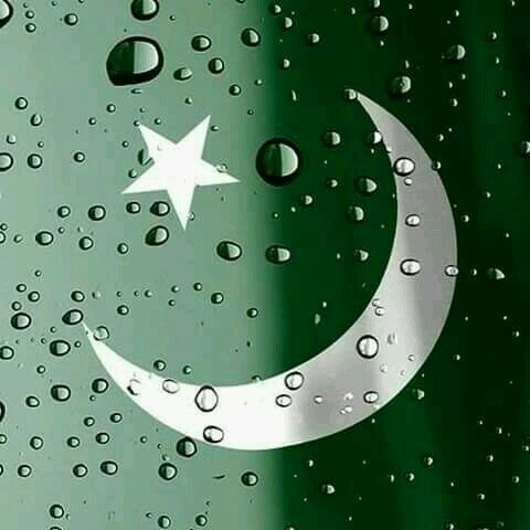 best Pakistan Independence Day Images Picture whatsapp dp status 5