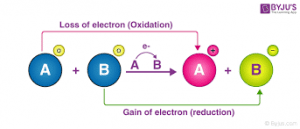 How would you define bioenergetics while relating it to the oxidation reduction reactions in living systems