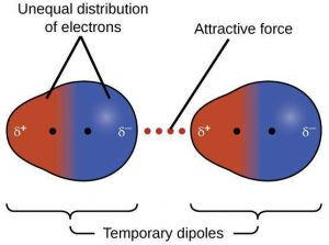 What do you mean by dispersion forces