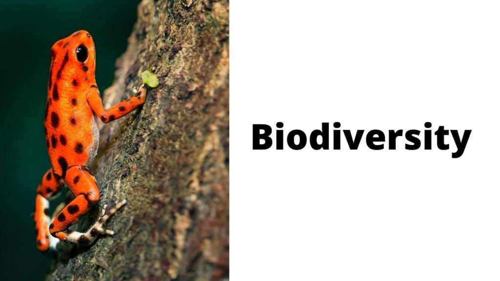 Biodiversity Biology Chapter number 3.