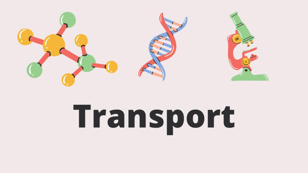 Chapter #9 Transport biology notes class IX pdf notes.